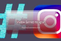 Shadow Banned Instagram