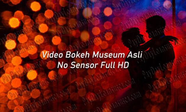 Video Bokeh Museum Asli No Sensor Full HD